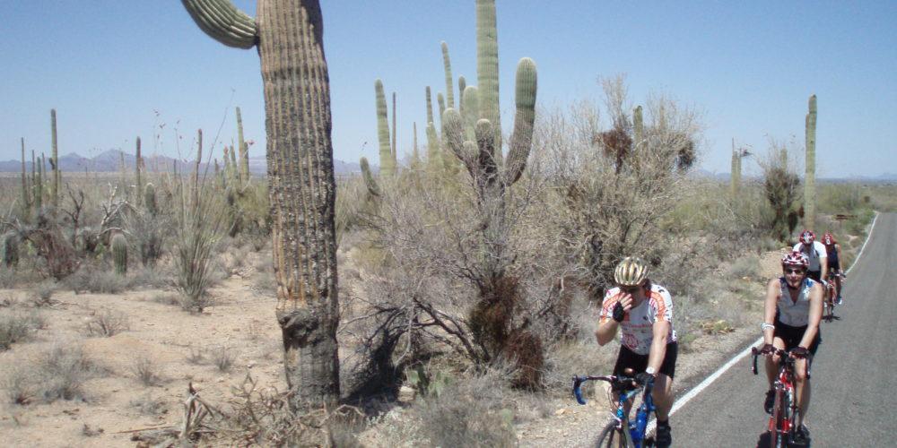 Vous avez encore soif de vélo? Continuez avec moi en Arizona
